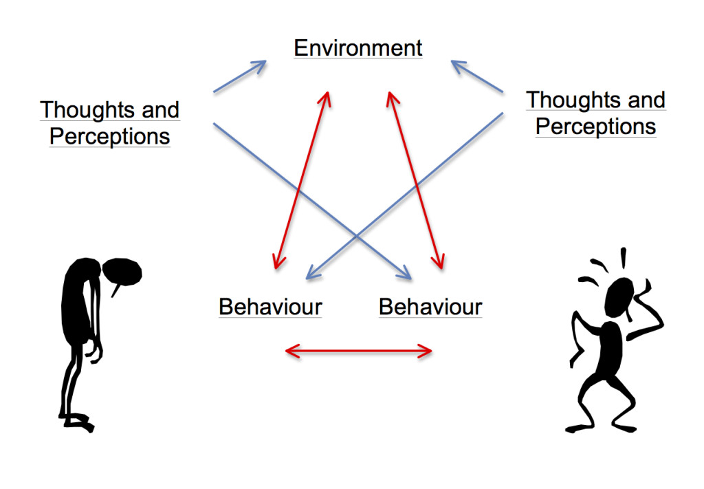Figure 4: pathways for displaying appraisals and behaviours