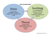 Three emotional systems